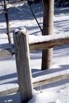 Fence_postsm_1